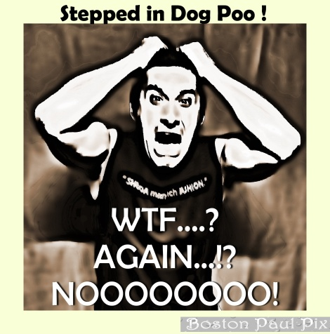 Stepped in Dog Poo